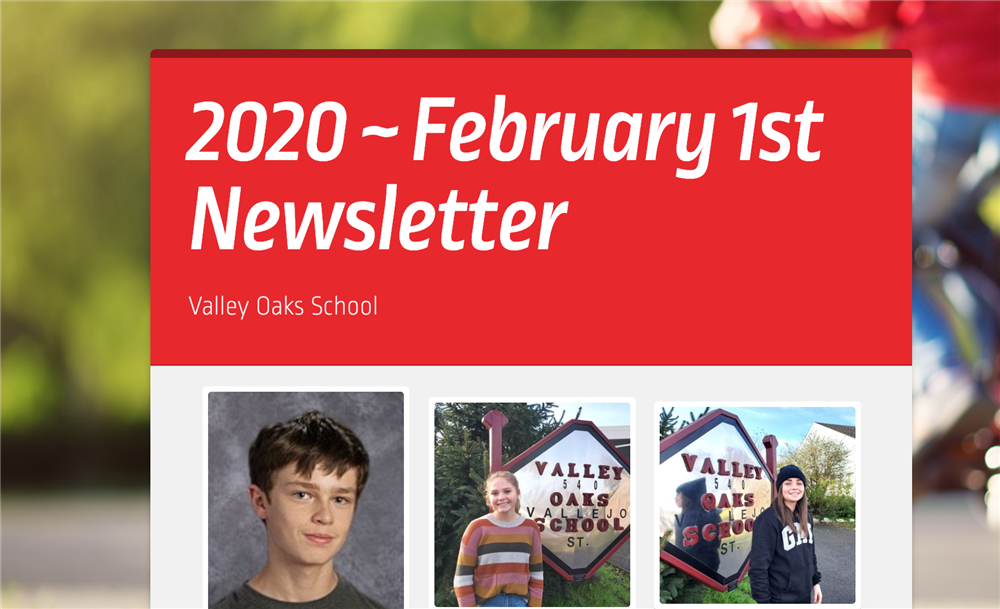 screen shot of top of February 1st Newsletter