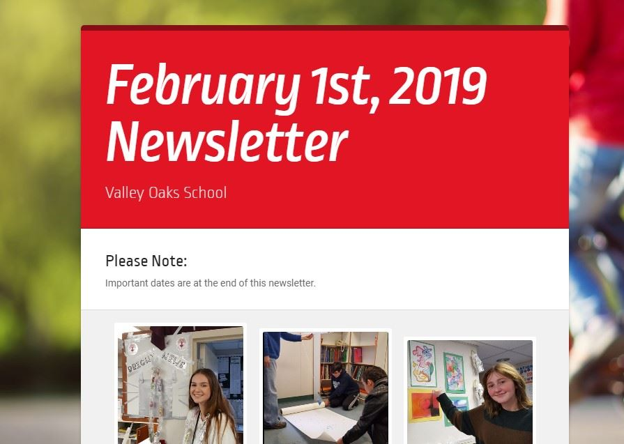 screenshot of February 1st, 2019 newsletter