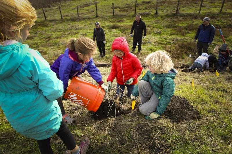 Grant elementary students plant native grass in Shollenberger Park