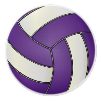 Petaluma High School Volleyball Tryouts and SSU Camp
